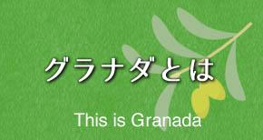 グラナダとは