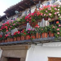 陶器とお花の装飾は昔からの習慣