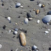 ビーチの石が綺麗