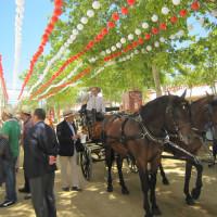 春祭り Granada Feria 3