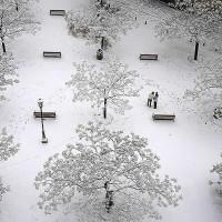 年に数回の雪。グラナダ闘牛場前